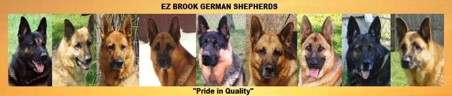 EZ Brook German Shepherds, Imported czech slovak working dogs